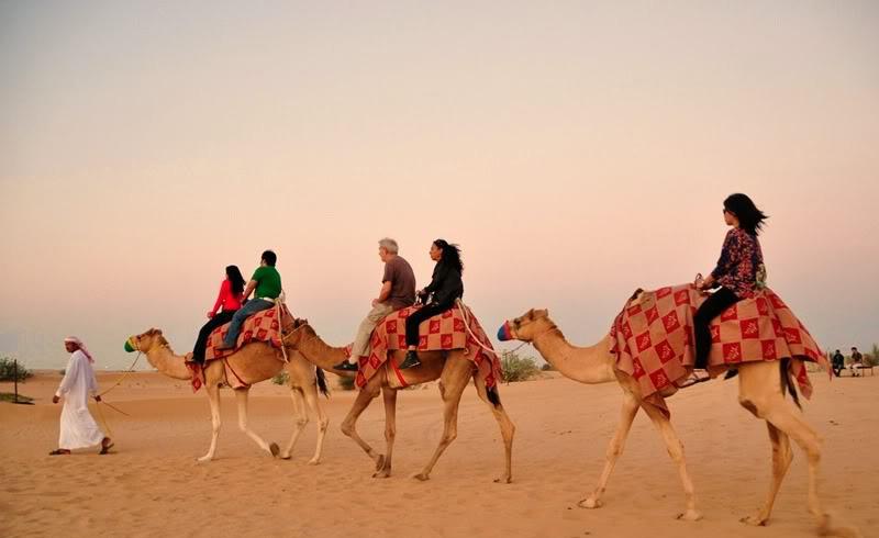 camel-ride-desert-dubai
