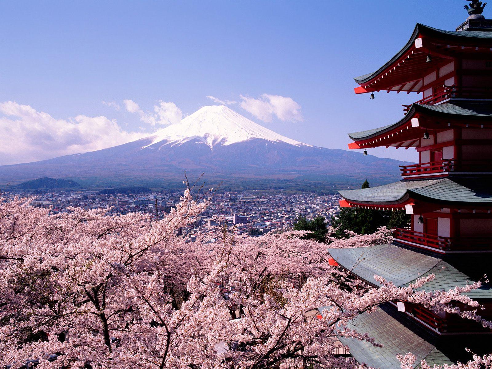 Thời điểm đẹp để đi du lịch Nhật Bản